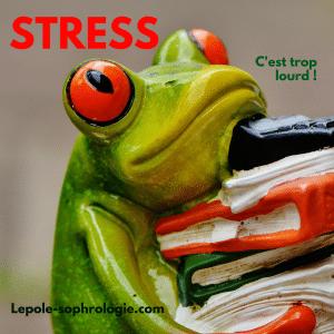 Stress d'une grenouille croulant sous le poids d'une charge