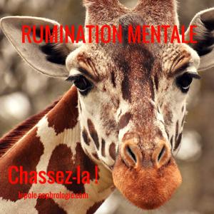 girafe - chassez la rumination mentale